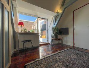 Lichte kamer met balkenplafond, houten vloer, een groot tapijt, een TV, bureau en een stoel. Groene planten, een groot raam en de toegang tot het dakterras zijn zichtbaar op de achtergrond